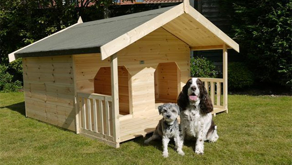 Build a Dog House out of Recycled Materials