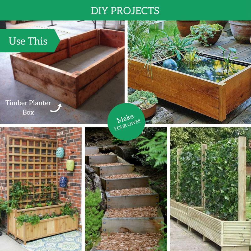 Macrocarpa Garden Planter Boxes Musgroves Ltd