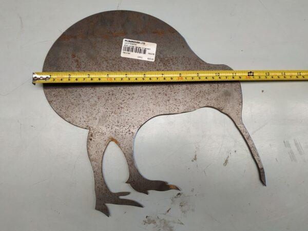 92238 Kiwi Measured w