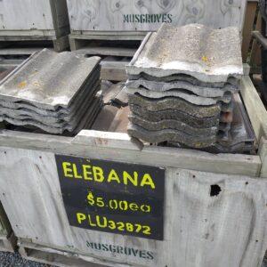 32872-Elabana 1